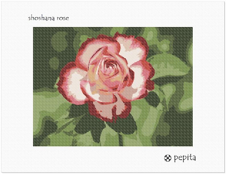 Needlepoint Kit or Canvas Tzedokah And Flowers